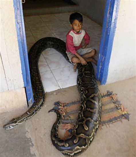 foot python  boys  friend  pics