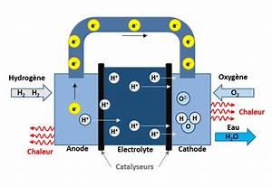 Fonctionnement Pile à Combustible : fonctionnement pile combustible h2sys ~ Medecine-chirurgie-esthetiques.com Avis de Voitures