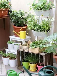 Kräuter Für Den Garten : ein st ck dschungel f r den balkon garten balkon pinterest ~ Eleganceandgraceweddings.com Haus und Dekorationen