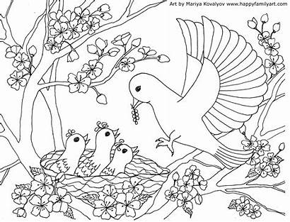 Coloring Birds Mother Bird Pages Happy