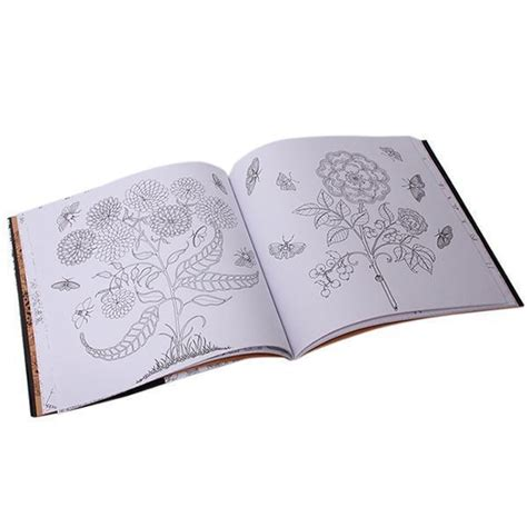 enchanted forest  inky quest  coloring book lazada ph