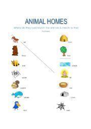 animal habitats printables animal homes  images