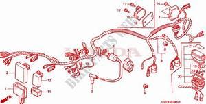 Wire Harness For Honda Trx 400 Fourtrax Foreman 4x4 1997   Honda Motorcycles  U0026 Atvs Genuine