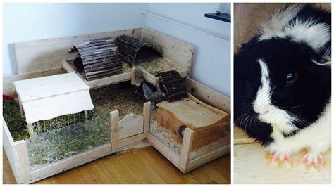 build   wooden guinea pig cage youtube