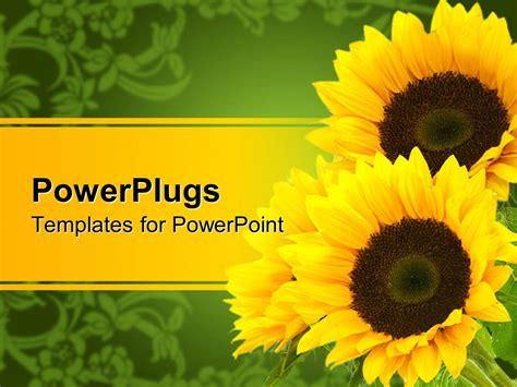 powerpoint template  sunflowers yellow  green