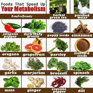 How to Increase Metabolism - Eco-Savy Metabolism Diet