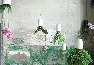 Boskke Sky Planter : new gardening ideas for spring ~ Orissabook.com Haus und Dekorationen