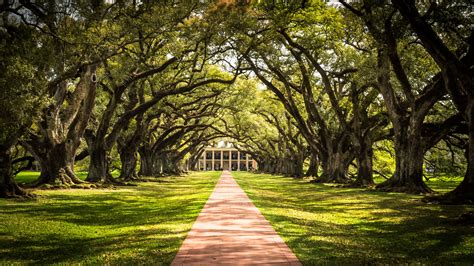The Most Photogenic Places in New Orleans