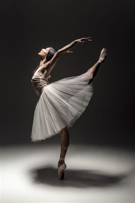 14971 professional photography of dancers 25 best ideas about ballet dancers on ballet