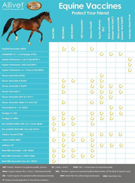 equine vaccine chart allivet pet care blog