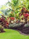 Best Tropical Landscape Design Ideas & Remodel Pictures tropical garden design