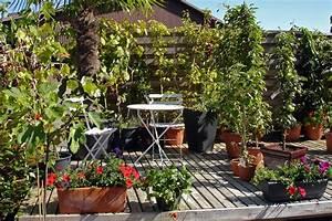 Pflanzen Für Balkon : bepflanzung balkon idee ~ Sanjose-hotels-ca.com Haus und Dekorationen