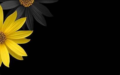 Yellow Background Flowers Wallpapers Flower Desktop Backgrounds