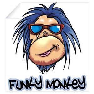 funky monkey marathon race reviews seekonk rhode island