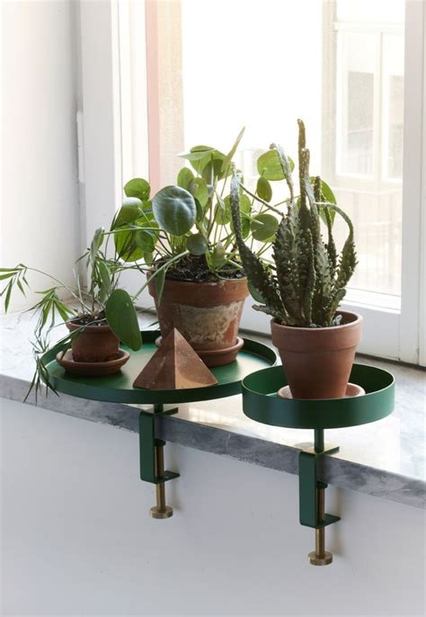 navet clamp tray  green plants pictures