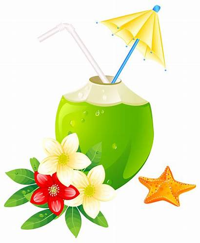 Summer Clipart Transparent Clip Exotic Yesterday Season