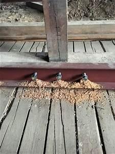 U Balken Holz : dachausbau in der praxis entstehung einer 180 qm dachgeschosswohnung altbau blog ~ Markanthonyermac.com Haus und Dekorationen