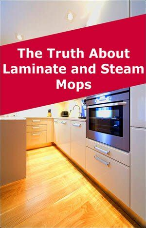 steam mop  laminate floors  steam queen