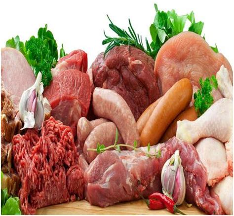 raw meat diet decisions thedogpress