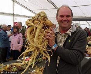 Guinness World Record secured by green-fingered David ...