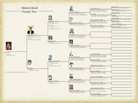 joeselicul  blank family tree template