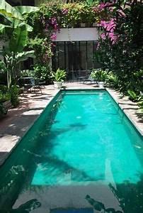 pour cacher le vis a vis une haie de bambous bamboo With jardin autour d une piscine 8 menuiserie exterieure platelage de piscine terrasse bois