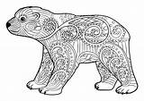 Coloring Bears Ours Simple Coloriage Bear Colorare Osos Orsi Colorear Disegni Mandala Adults Orso Adultos Young Adulti Adult Colouring Justcolor sketch template