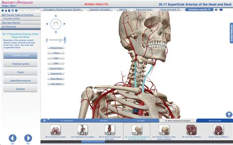 Anatomy And Physiology Software