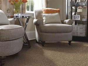 Frieze Carpet  What Is It  The Benefits  U0026 The Best Frieze