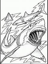 Coloring Ocean Pages Fish Printable Creatures sketch template