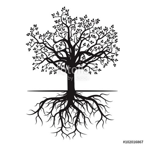 Tree Trunk And Roots Template by Quot Black Tree And Roots Vector Illustration Quot Stock Image
