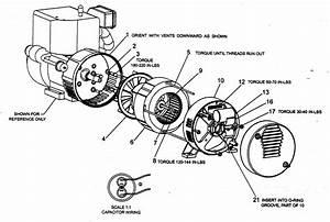 919 670040 Craftsman 120 240 Volt 4250 Watt Generator