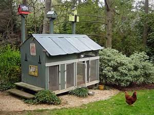 Chicken Coops For Backyard Flocks