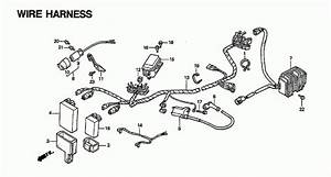 1993 Honda Fourtrax 300 4x4 Trx300fw Wire Harness Parts
