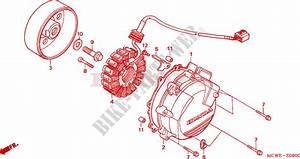 Wiring Diagram Honda Vfr 800