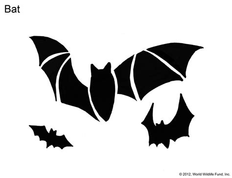 bat pumpkin stencil pin bat printables submited images pic 2 fly pelautscom on pinterest