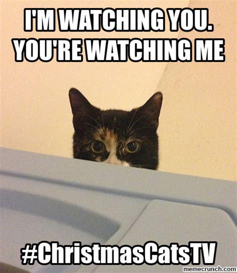 Im Watching You Memes - i m watching you you re watching me