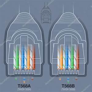 Diagrama De Cableado De Red Cable Conector  U2014 Vector De