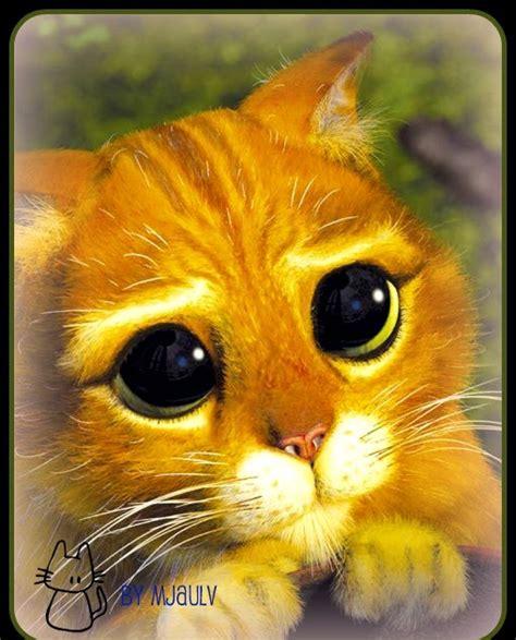 Par mūsu dzīvnieciņiem:* Galvenās Personas Blogs ;: Dzīve kā košums! :) ;)