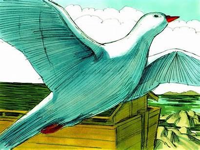 Noah Bible Ark Genesis Freebibleimages Dove Illustrations