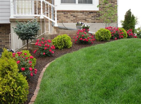 landscape lawn image gallery lawn landscaping