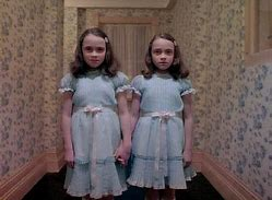 Image result for the twins the shing
