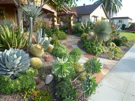 cactus landscape for the front yard outdoor landscaping