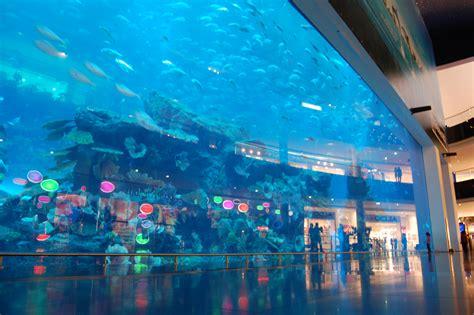 the dubai mall aquarium 22 insanely luxurious things you ll see in dubai bugati taxi guff