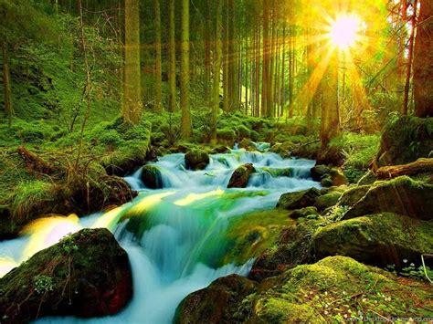 Most Beautiful Nature Wallpapers Wallpapers Zone Desktop ...