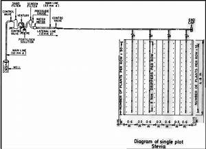 Layout And Design Of Drip Irrigation System