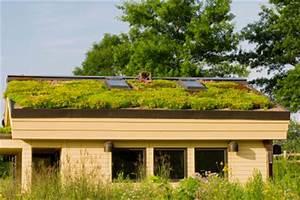 Dach Neu Decken Baugenehmigung : gartenhaus dach neu decken anleitung ~ Bigdaddyawards.com Haus und Dekorationen