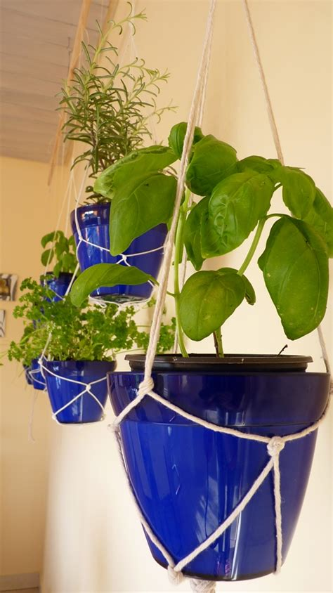 Cool Hanging Herb Garden Ideas  Grow  Favorite