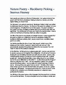 Blackberry Picking Essay - hepatitze