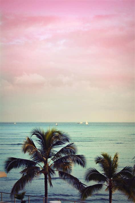 schöne delfin bilder die 106 besten himmel hintergrundbilder f 252 r